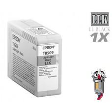 Genuine Epson T850900 UltraChrome HD Light Light Black Inkjet Cartridge